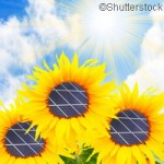 Printed-plastic solar panel project kicks off