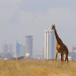 kenyan-solar-powered-mobile-phone
